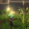 Herbalism Route for Whiptail in Uldum
