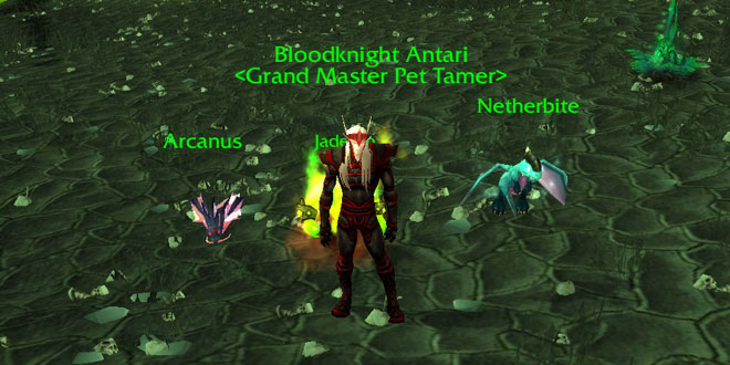 Bloodknight Antari - Battle Pets Trainer