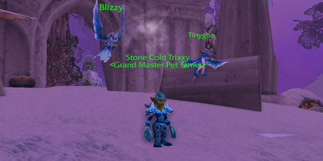 Battle Pet Trainer Stone Cold Trixxy