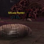 silicate-feeder-feat